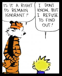 remaining ignorant
