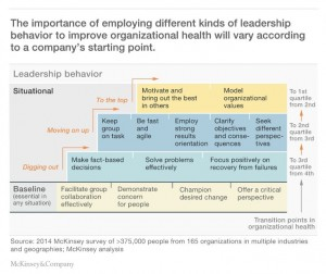 McKinsey Situational Leadership